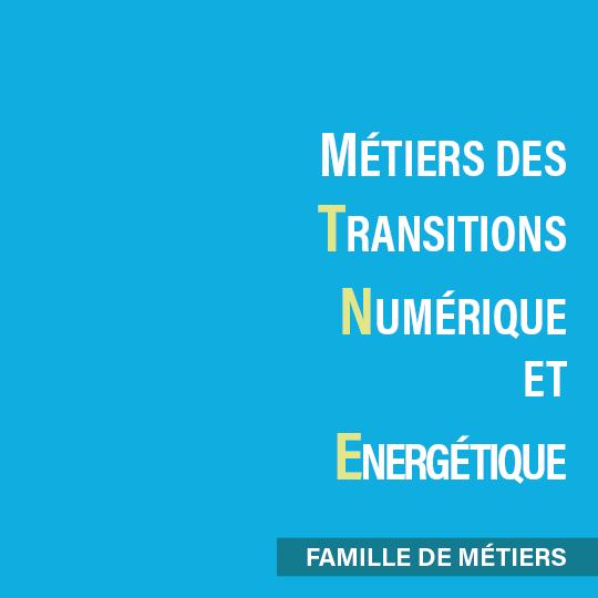 MNTE : Famille de Métiers du Numérique et de la Transition Energétique en seconde au lycée.