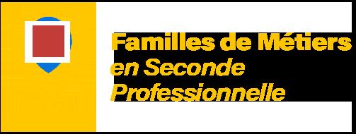 Les Familles de Métiers de la voie professionnelle